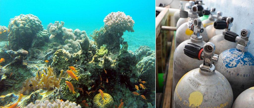 aqaba-diving.jpg